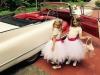 Cadillac Oldtimer Sedan DeVille Cabrio Hochzeitsauto