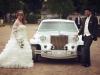 Dügün türkische Hochzeit Limo Stretchlimousine Hochzeitsplaner Brautwagen