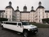 Hochzeit Limousinenverleih Bensberg  Eckenhagen Stretchlimousine Hochzeitsauto