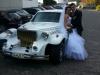 kutsche zur Hochzeit mieten